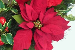 poinsettia_wreath