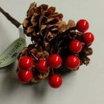 pinecone and berries